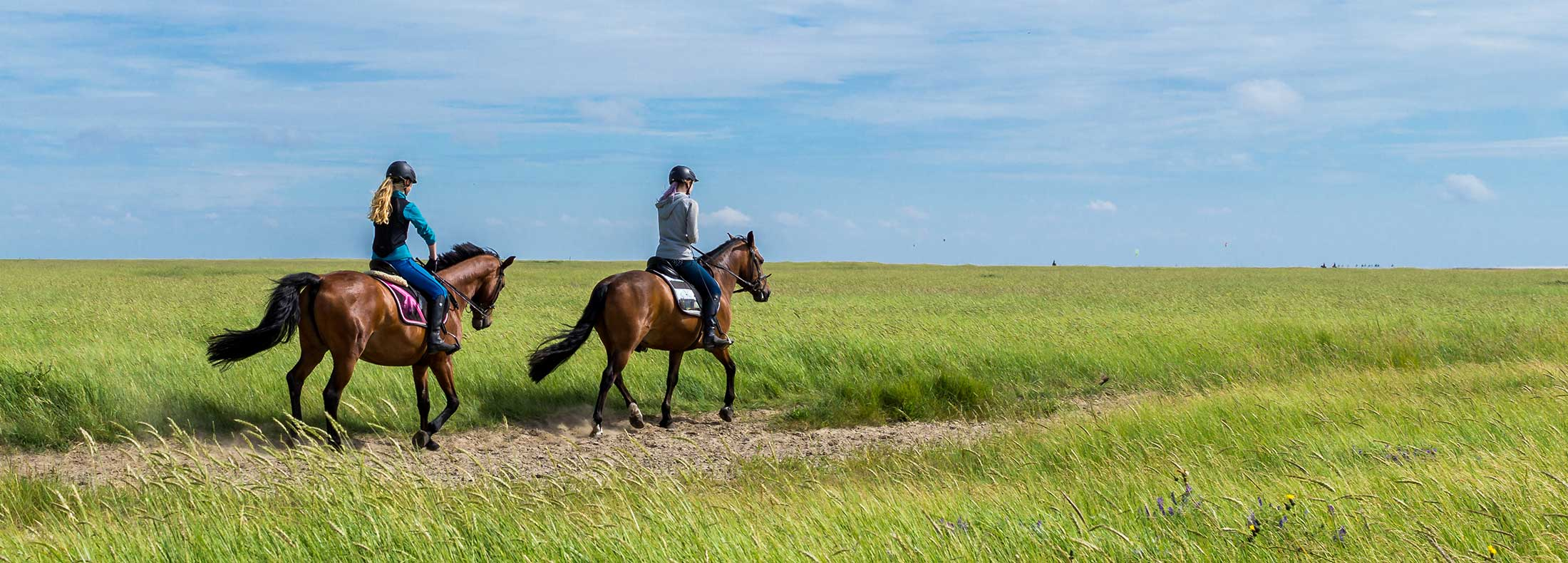 Two riders on horses in windy field