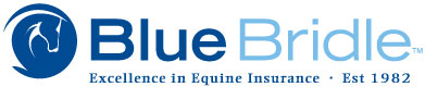 Blue Bridle Insurance Logo