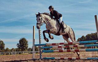 Rider Jumping over hurdle