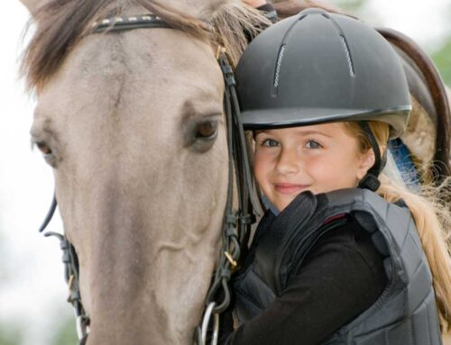 Summer Riding Camps and Clinics